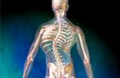 Симптомы и лечение сколиоза