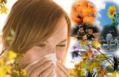 Как проводится выявления аллергена?