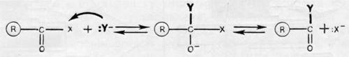 Основные принципы механизма действия ферментов