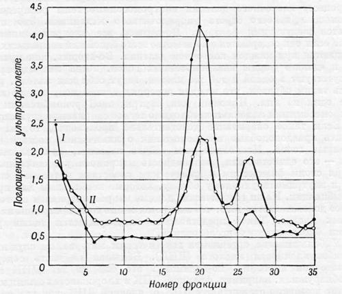 Дезоксирибонуклеиновая кислота