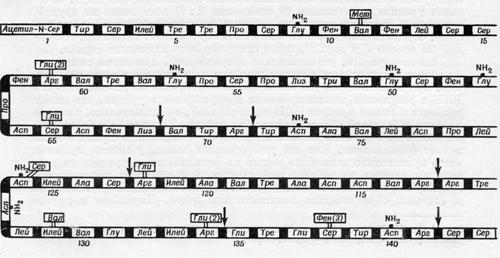 Состав природных штаммов вируса табачной мозаики