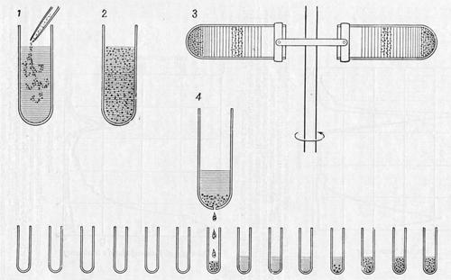 Получение двухцепочечных гибридов из смесей одноцепочечных ДНК и РНК