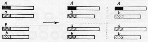 Вопрос функции генов