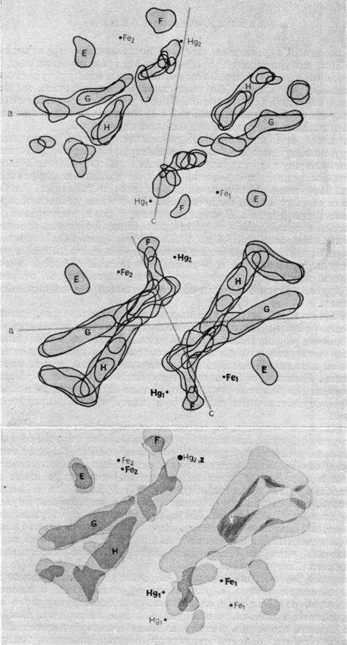 Расположение четырех групп гема в молекуле оксигемоглобина