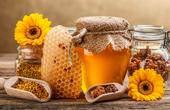 Мёд и продукты пчеловодства: каковы их целебные свойства?