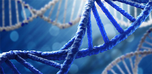 ДНК тест: особенности и преимущества