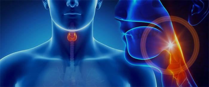 Психоэндокринология: влияние заболеваний щитовидной железы на психику человека