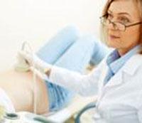 Сдача анализа на токсоплазмоз при беременности