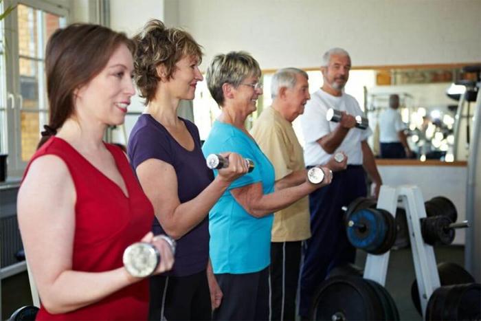 Основные заболевания костно-мышечной системы