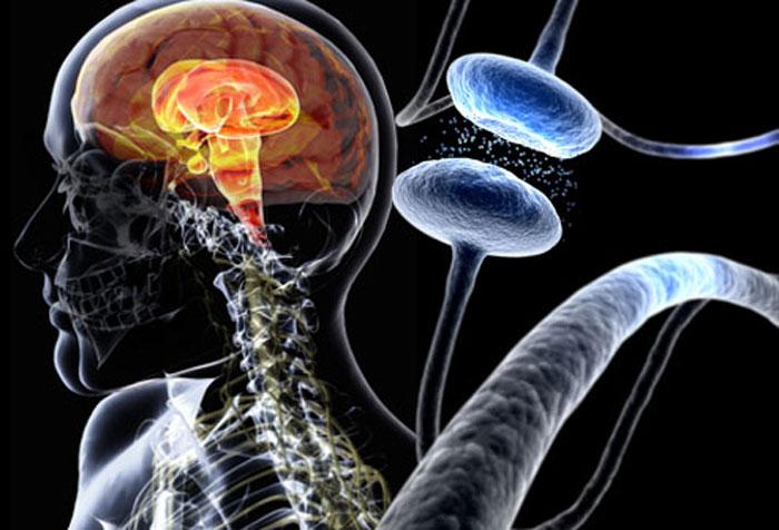 Особенности лечения болезни Паркинсона